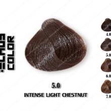 رنگ مو اچ اس لاین شاه بلوطی روشن 5.0
