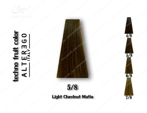 رنگ مو تکنو بلوطی زیتونی روشن 5.8